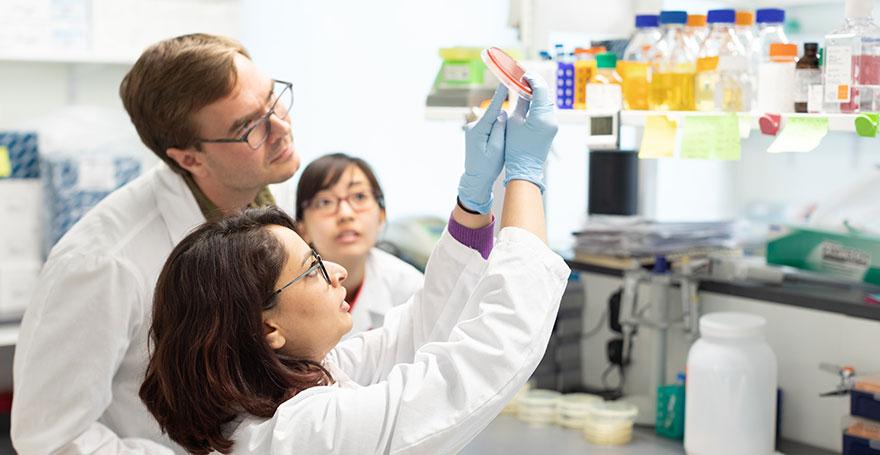 Advancing Diagnostics that Can Save Lives - Alumni - Harvard Business School